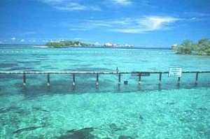 isole caraibiche arcipelago del Rosario Colombia
